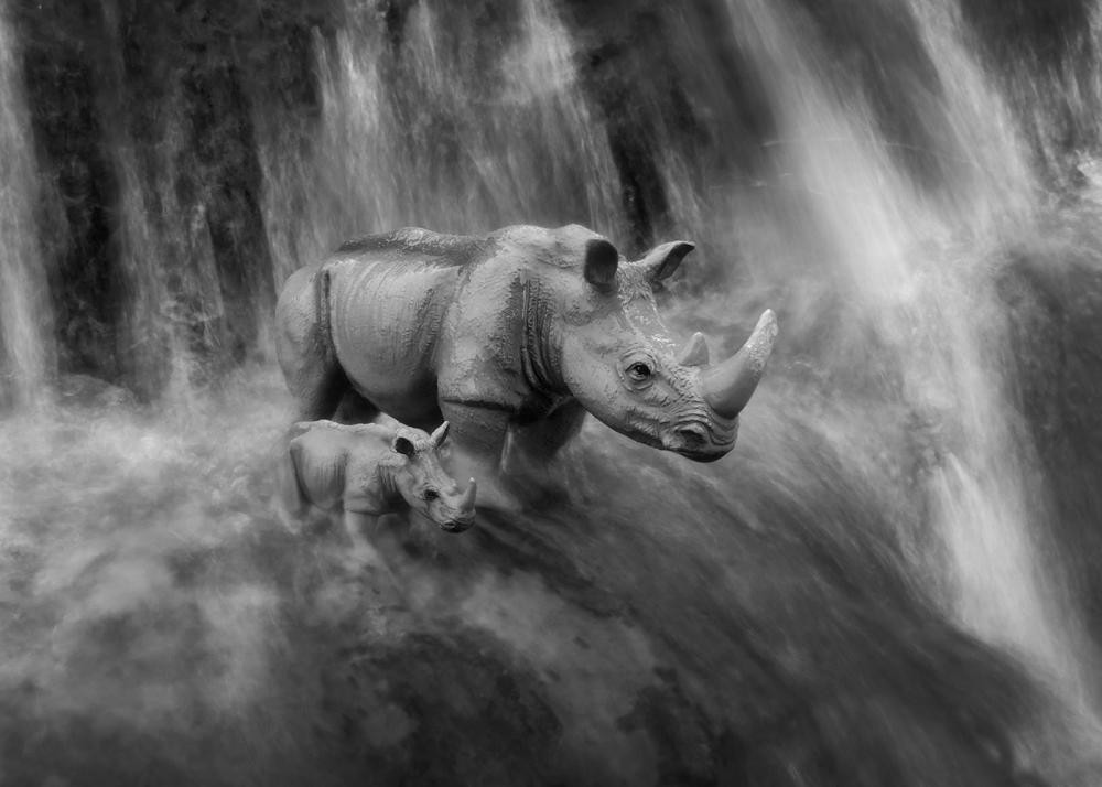 RHINO'S WATERFALL